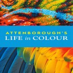 Attenboroughs Life in Colour